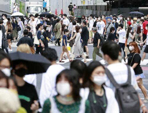 日本新冠確診累計超4萬宗 寵物犬驗出新冠狀病毒